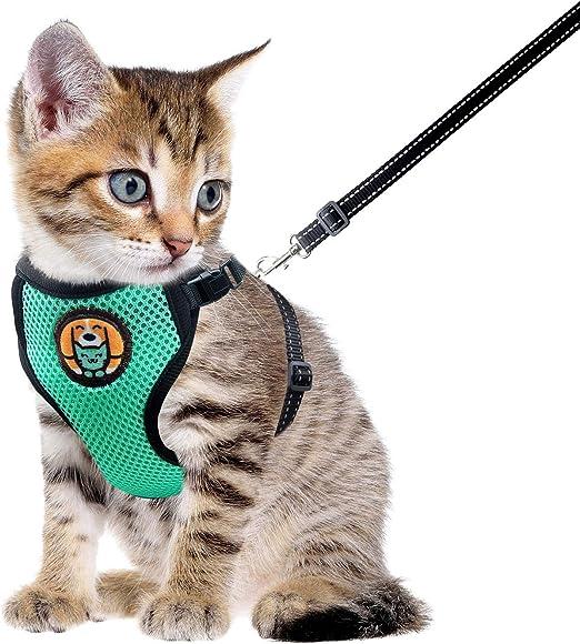 AWOOF Arnés para Gato y Correa a Prueba de Escape, Chaqueta Ajustable para Caminar con Gatito Cat Kitten con Anillo de Correa de Metal, Chaleco Suave y Transpirable para Mascotas pequeñas: Amazon.es: