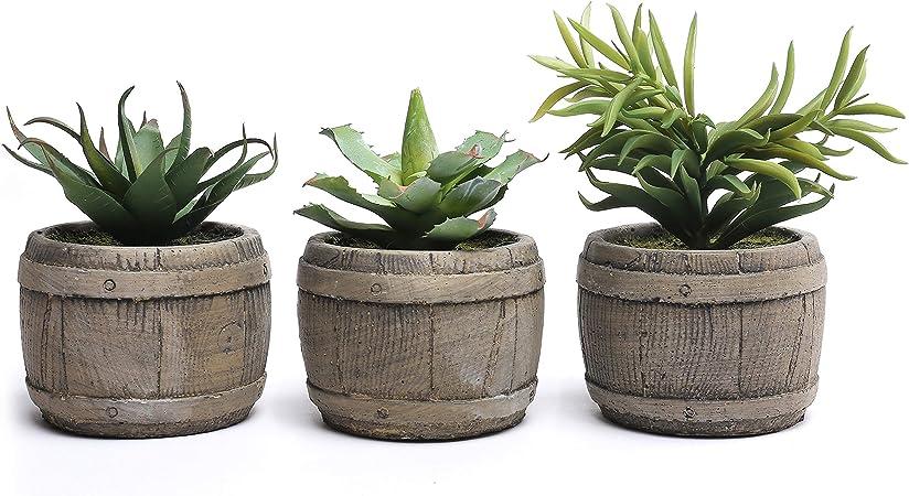 Amazon.com: Assorted Mini Artificial Suculentas Plantas en ...