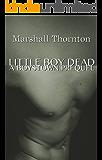 Little Boy Dead: A Boystown Prequel (Boystown Mysteries Book 0)