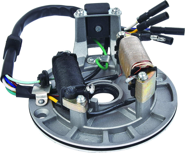 2 Coil Ignition Magneto Stator Plate Replacement for 50cc 70cc 90cc 110cc 125cc Taotao Kazuma SSR Baja ATV Quad Dirt Kick Bike 4 Wheeler