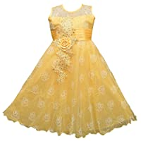 AD & AV Girl's Synthetic Georgette Dress with Golden Sparkle