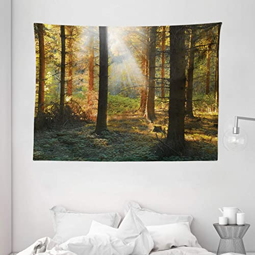 Ambesonne Forest Tapestry, Sunset View of Dark Pine Forest in Autumn Foggy Scene with Sunbeams Trunks Shadow, Wide Wall Hanging for Bedroom Living Room Dorm, 80 X 60 , Green Orange
