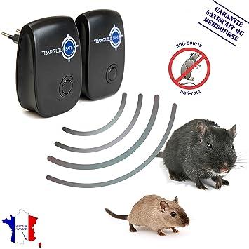 comment se dbarrasser des souris dans les murs finest comment se dbarrasser des souris dans les. Black Bedroom Furniture Sets. Home Design Ideas