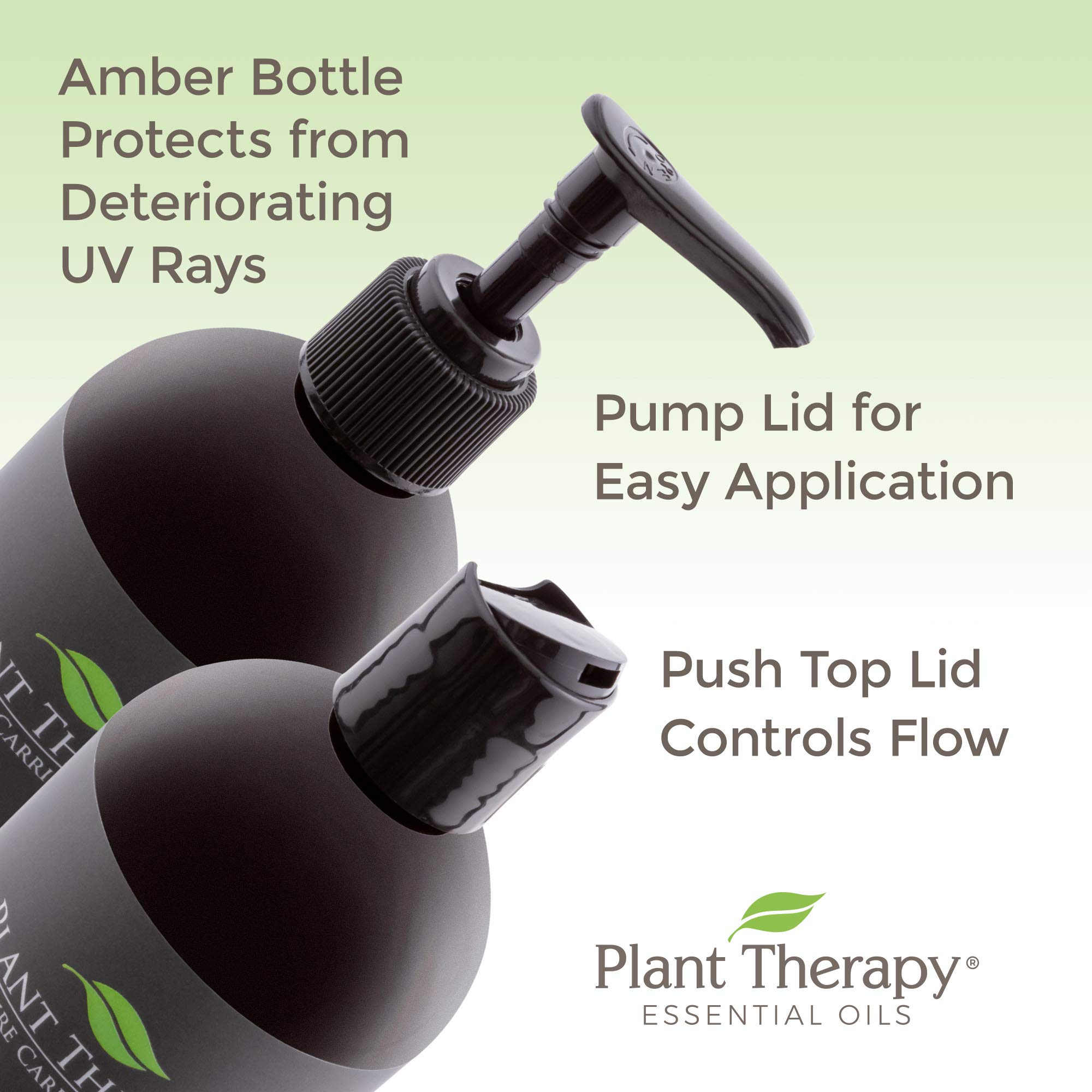 Plant Therapy Avocado Carrier Oil + PUMP 16 oz A Base Oil for Aromatherapy, Essential Oil or Massage use by Plant Therapy