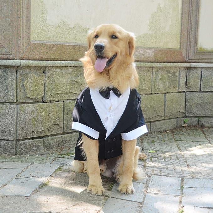 Dog Wedding Outfit Over the Collar Dog Formal Wear Black Dog Bow Tie Dog Tuxedo Wedding Attire Engagement Dog Gift