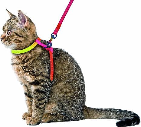 Arnés para gatos RAINBOW 10 mm/120 cm