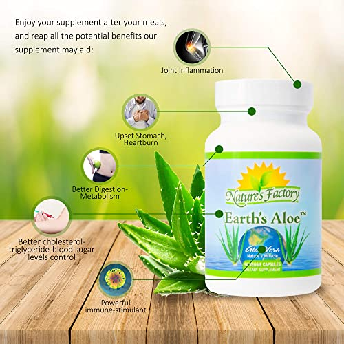 Pure Aloe Vera Dietary Supplement Capsules Organic, Freeze Dried, Whole Leaf Aloe Vera Extract 90 Capsules, 600 milligrams Potent, No Fillers, No Preservatives, Organic Formula, Third-Party Tested