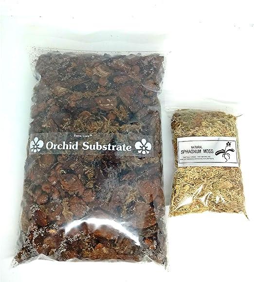 Terra CORE – mezcla de compost de tierra para orquídeas + musgo ...