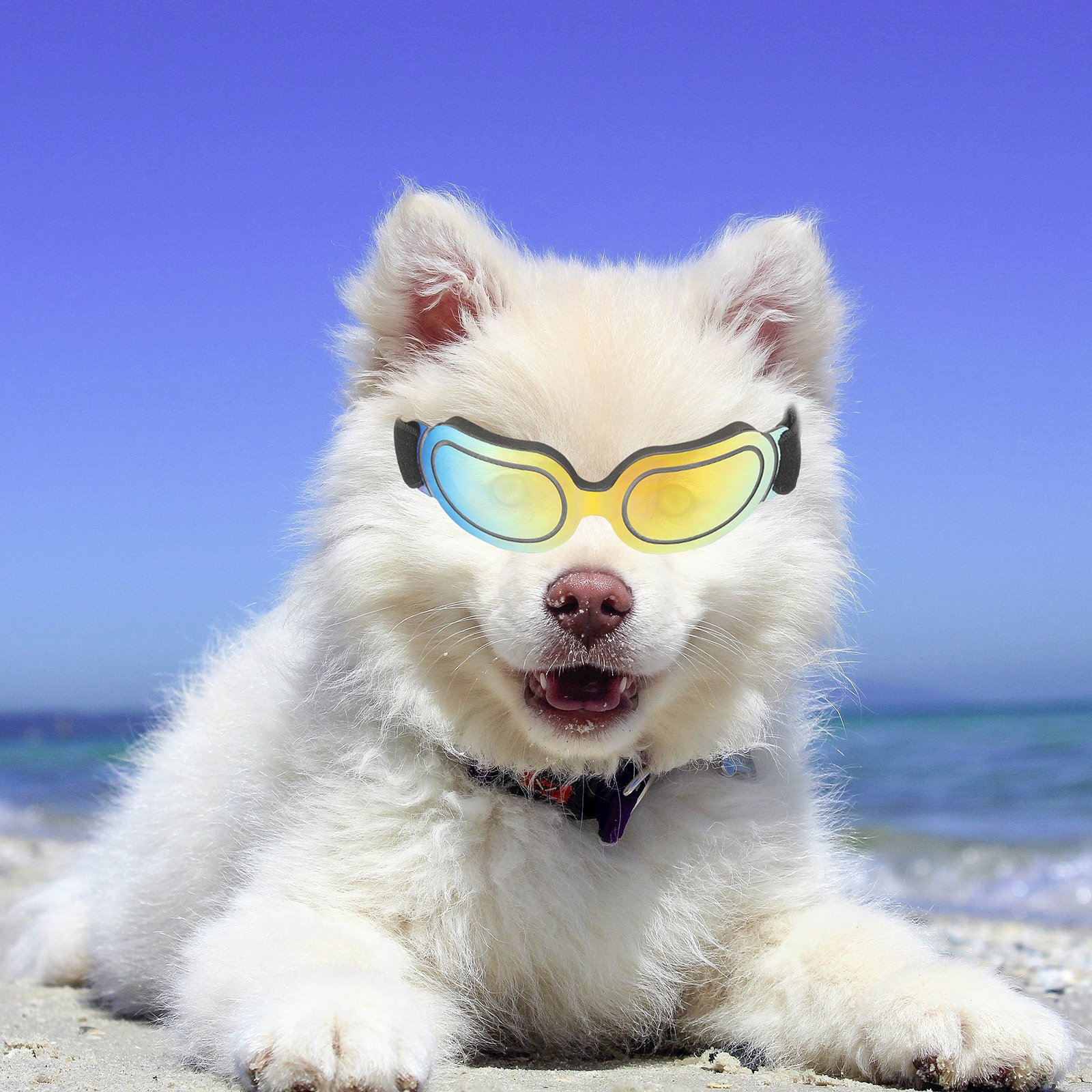 Vevins Dog Goggles Pet Sunglass Adjustable UV Protection Waterproof Eyewear for Puppy Doggie Cat Small Colorful
