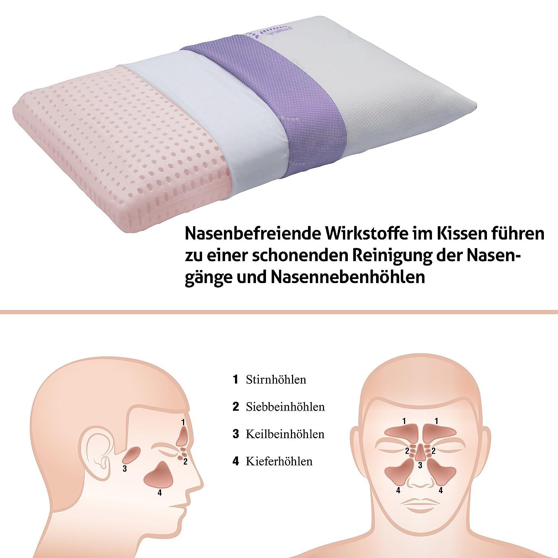 Erfreut Nasengänge Galerie - Anatomie Von Menschlichen Körperbildern ...
