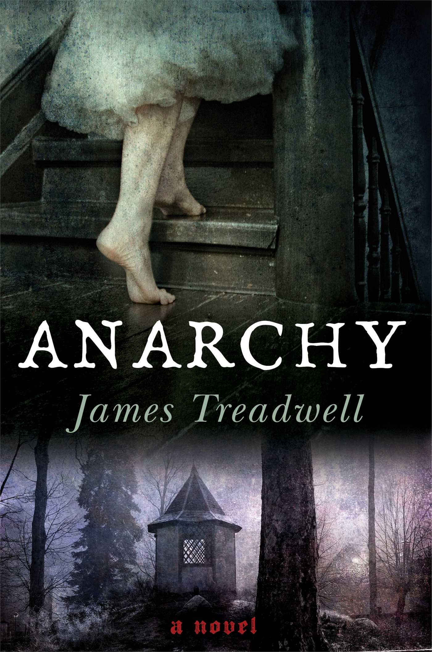 Read Online Anarchy: A Novel ebook