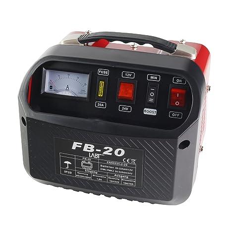 Auto Cargador de batería 12 V | 24 V para Coche y moto pilas ...