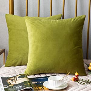 DEZENE Throw Pillow Covers, 2 Pack Super Soft Velvet Decorative Pillow Cases, Luxury Accent Rectangular Pillowcases, Square Cushion Covers for Farmhouse,Couch,Sofa, 20 x 20 Inch, Chartreuse