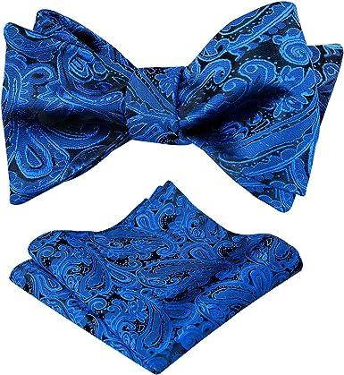 Alizeal Paisley-Pajarita para Anudar y Pañuelo para Hombre Azul ...