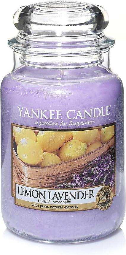 x12 Bougies chauffe-plat Yankee Candle 1107079E Boite de 12 lumignons Lavande et Citron Vert Combinaison