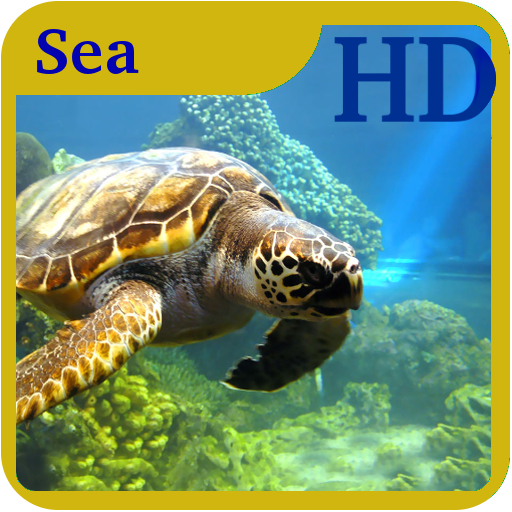 Amazon.com: Sea Creatures Wallpaper HD: Appstore For Android