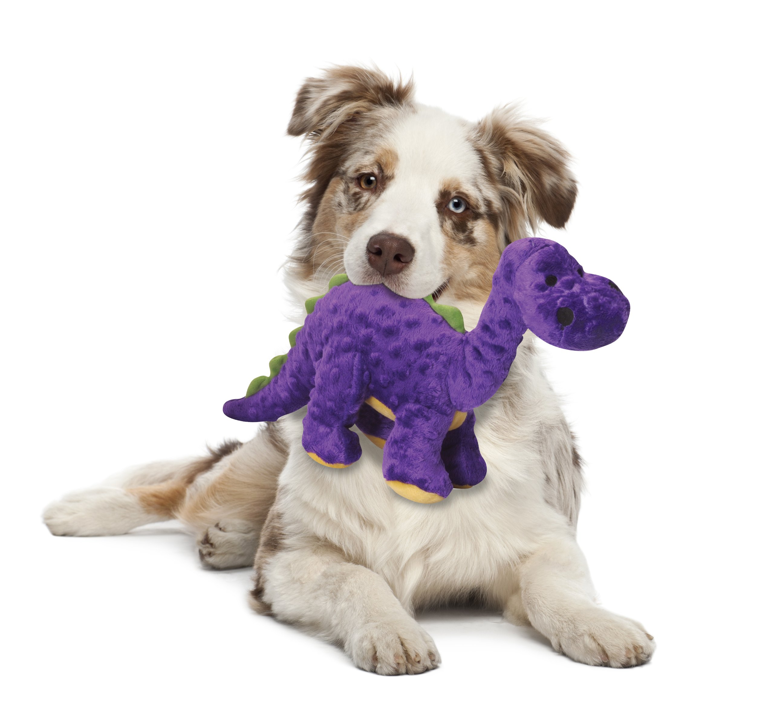 Good Toys For Dogs That Like To Chew