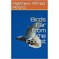 Birds Far from the Forest (English Edition)