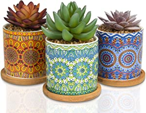 CASALUXE Artificial Succulents, Set of 3– Two-Toned Real Touch Plastic Fake Plants in Beautiful Mandala Pattern Ceramic Pots– Stylish Modern Farmhouse Decor– Small, Faux and Ultra Cute: 5x3 inches