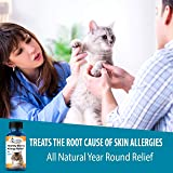 BestLife4Pets Healthy Skin and Allergy Relief for