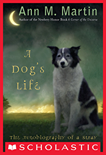 How to Steal a Dog: A Novel - Kindle edition by Barbara O'Connor ...