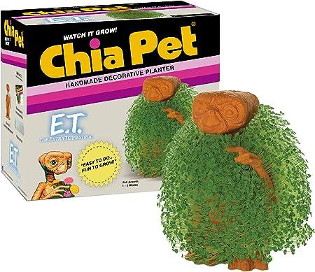 Amazon.com: Maceta decorativa de cerámica de Chia Pet, E.T. ...