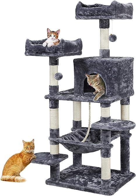Kitten Toes 8020 Amazonite Lite