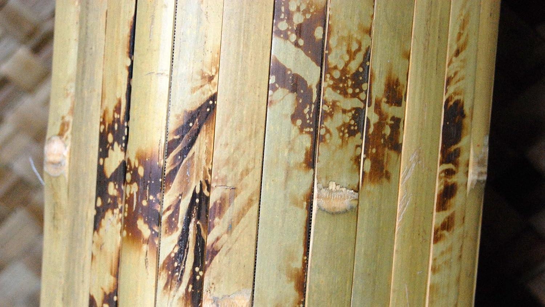 amazon com backyard x scapes bama tr05 tambour panels 4 u0027 h x 8