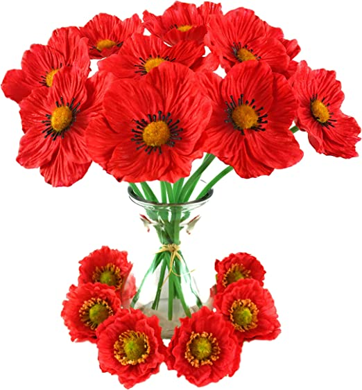 Hermosa hecha a mano por mí Amapola Roja Gemelos-Recuerdo