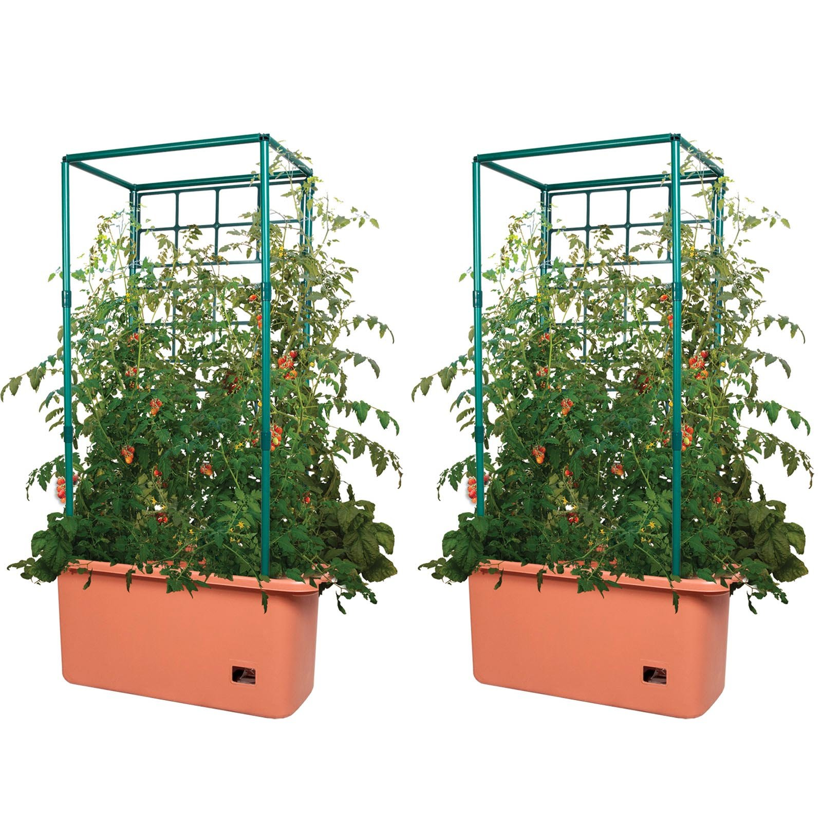 Hydrofarm 10 Gallon Self Watering Tomato Trellis Garden on Wheels, Pair | GCTR by Hydrofarm