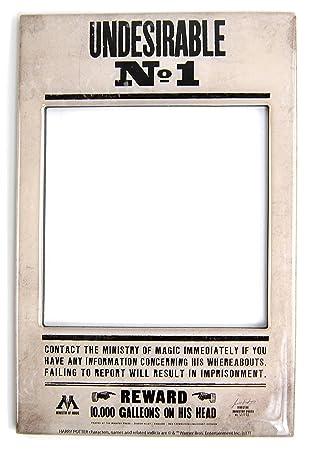 Harry Potter Photo Frame Fridge Magnet (Undesirable No 1): Amazon.co ...