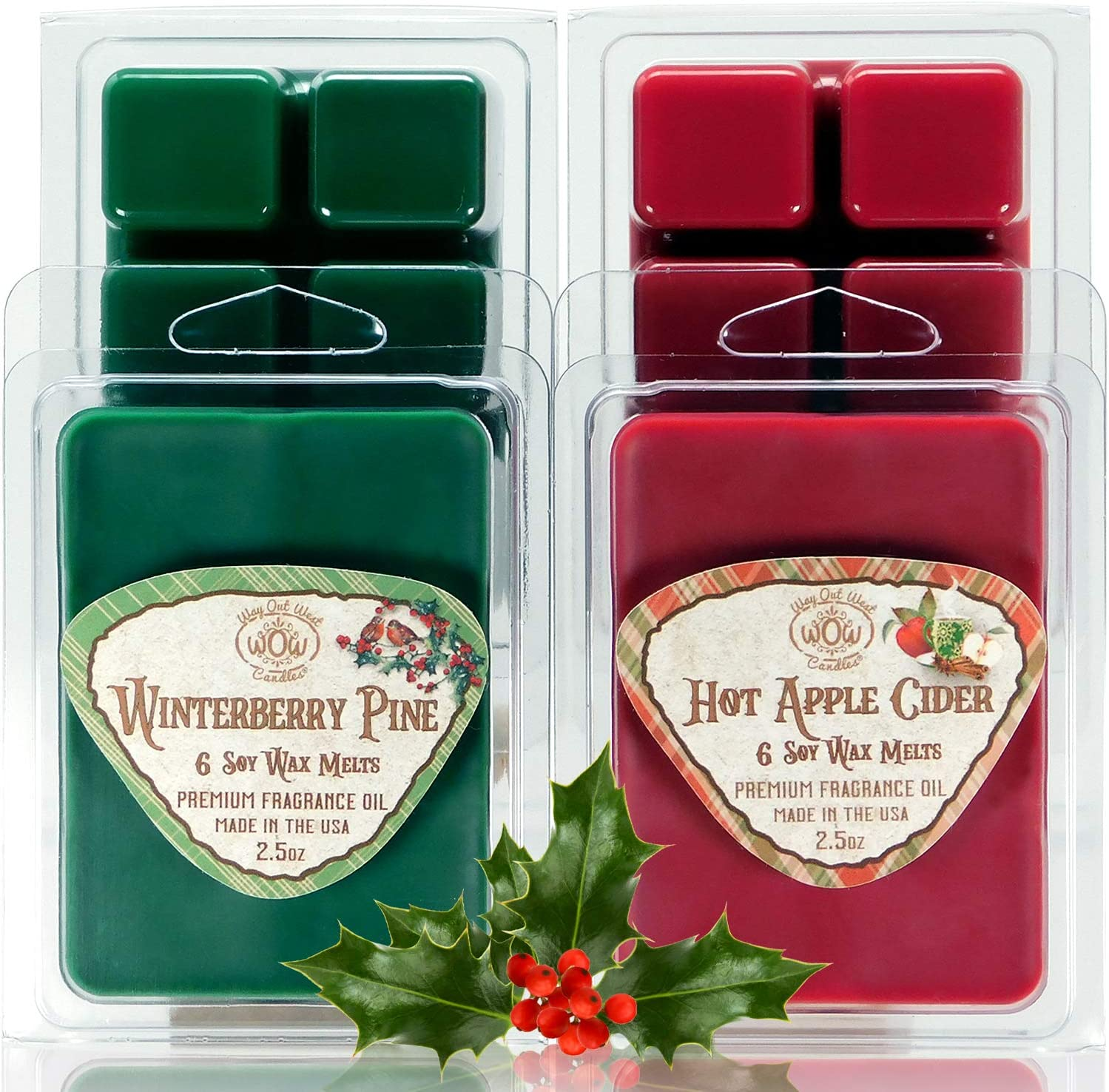 Way Out West Candles - Scented Wax Melts - Highly Fragrant Air Freshener - 4 Pack Assorted Set of 6 Melt Cubes (4, Hot Apple Cider & Winterberry Pine)
