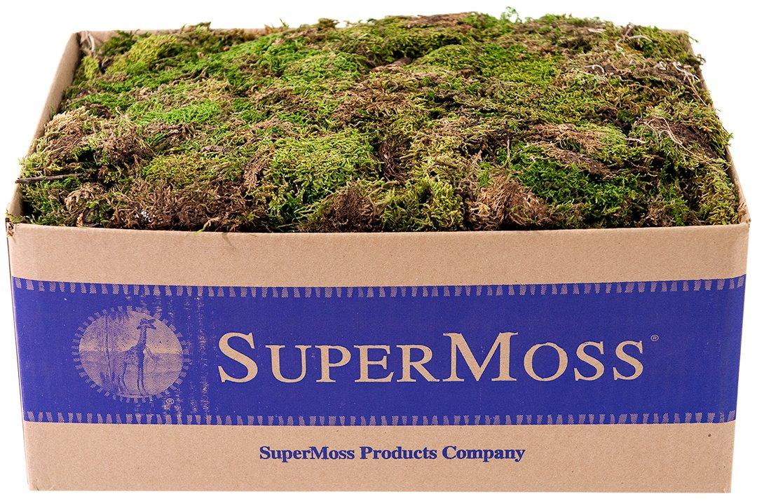 SuperMoss (21754) Sheet Moss Petite (Small Pieces) Dried, Fresh Green, 3lbs