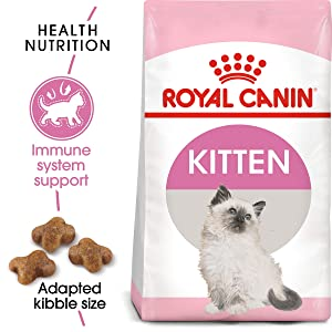 Royal Canin Nutrition Kitten