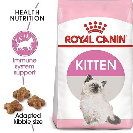 ROYAL CANIN - Comida para Gato seco, Bolsa de 7 Libras: Amazon.es ...