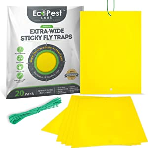 Sticky Fruit Fly and Gnat Traps – 20 Pack (Extra-Wide) | Yellow Fly Paper Trap for House Plants and Sticky Traps for Fruit Flies, Fungus Gnats, and Other Flying Insects | Indoor and Outdoor Fly Tape