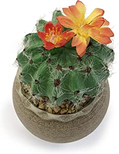 Allgala Small Desktop Artificial Succulent Plant with Natural Clay Pot