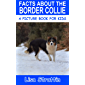 Facts About the Border Collie (A Picture Book for Kids, Vol 299)