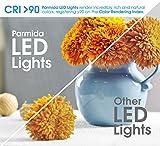 Parmida (4 Pack) 6 inch LED Adjustable Gimbal