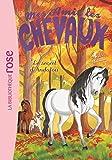 Mes Amis les Chevaux - Volume 19 - Le Secret d'Andalou