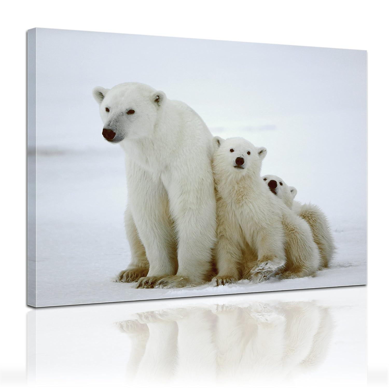 Bilderdepot24 bastidor imagen - Cuadros en Lienzo Familia de oso ...