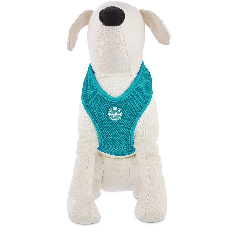 (Small) Good2Go Teal Mesh Dog Harness
