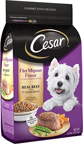 CESAR Small Breed Dry Wet Dog Food