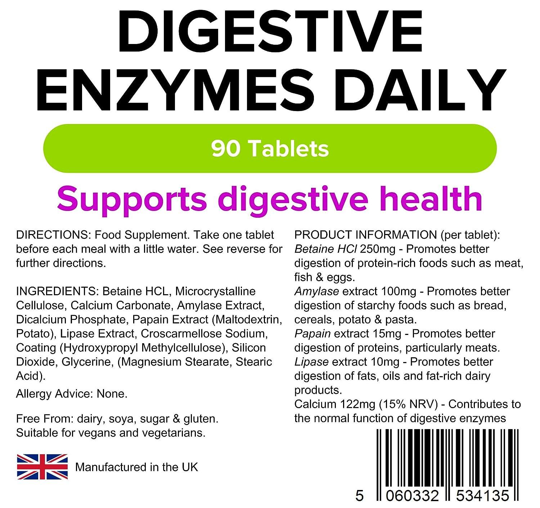 Que son las enzimas y como funcionan