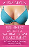 Beginner's Guide to Natural Breast Enlargement: A