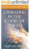 Operating in the Court of Angels (The Courts of Heaven Book 2)