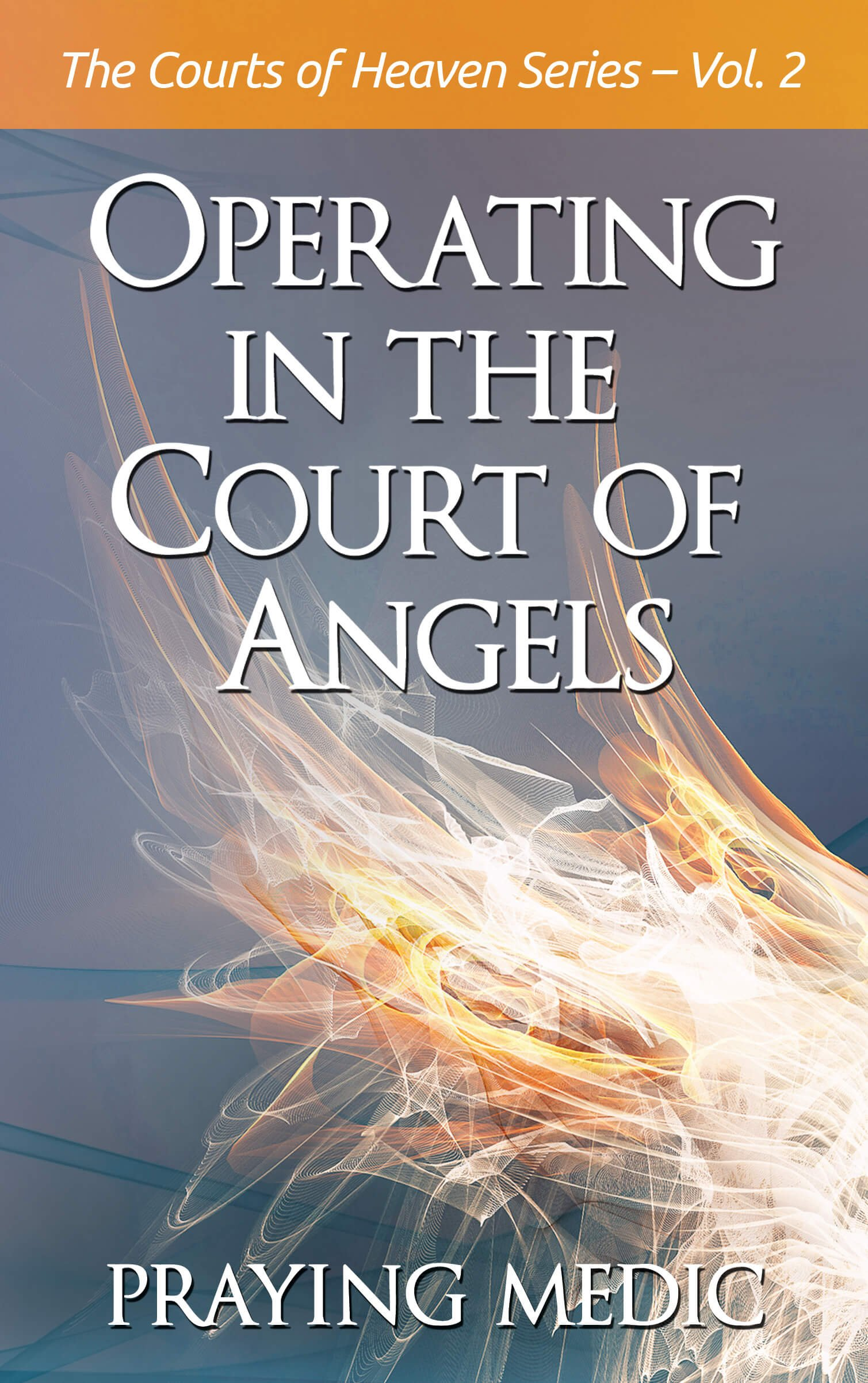 Operating In The Court Of Angels  The Courts Of Heaven Book 2   English Edition