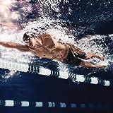 Speedo Shorts - Speedo Endurance+ Jammer Swimming
