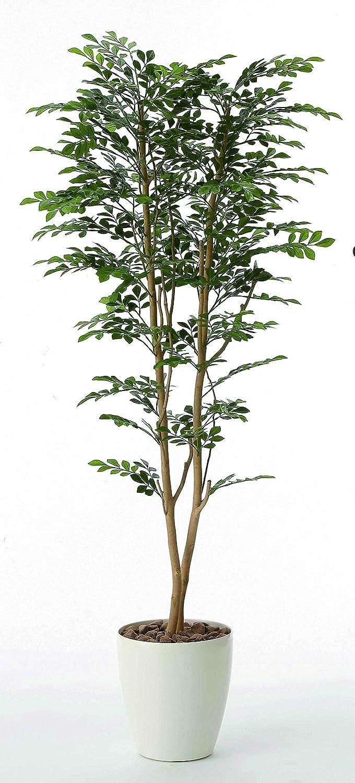 光触媒 ゴールデンツリー1.6m【人工観葉植物】 B077ZSHL74