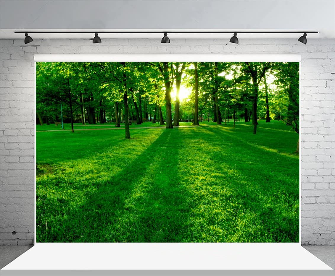 Leowefowa 10X8FT Spring Park Backdrop Jungle Forest Trees Backdrops for Photography Green Grass Meadow Sunrise Vinyl Photo Background Kids Adults Outdoor Party Studio Props